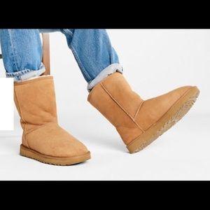 Men's UGG Classic Chestnut Short Boot Size 9